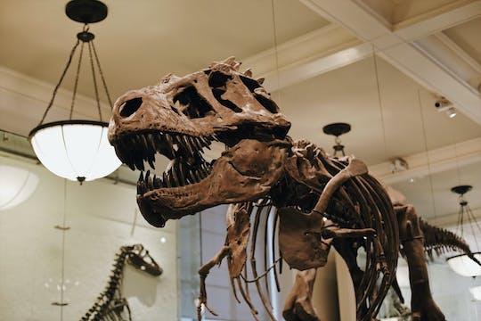 Tour semiprivado pelo Metropolitan Museum of Art e pelo American Museum of Natural History