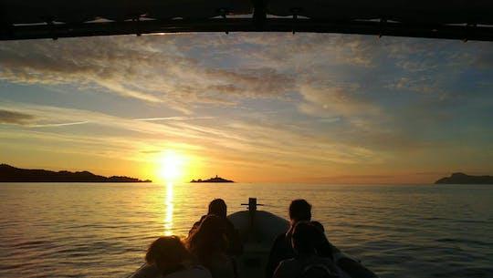 Alcudia Sea Explorer – Coast Sunrise & Dolphins