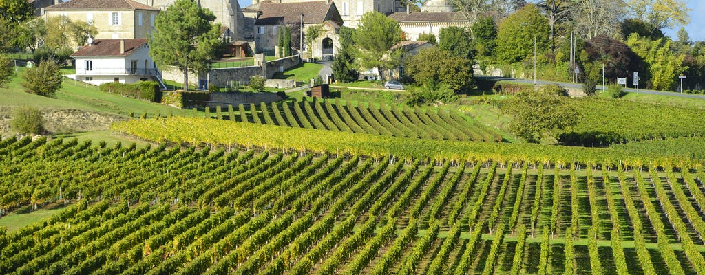 Saint Emilion wine half-day private tour from Bordeaux
