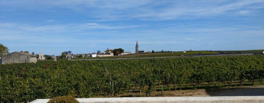 Saint Emilion & Médoc wine full day private tour from Bordeaux