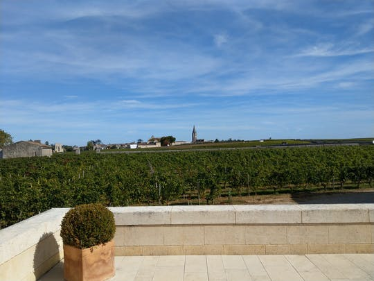 Tour privato di un'intera giornata a Saint Emilion e vino Médoc da Bordeaux