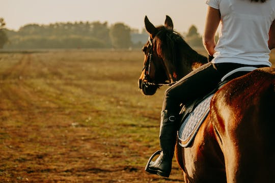 Horse riding private tour in Comporta natural reserve