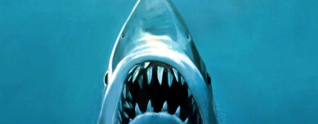 Martha's Vineyard Jaws movie private tour