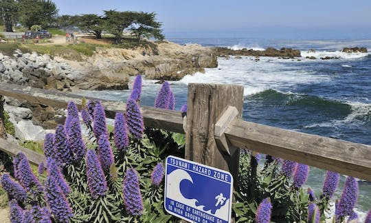 Monterey and Yosemite 2-day tour from San Francisco