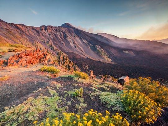 Wycieczka trekkingowa na Etnę z degustacją lokalnych produktów