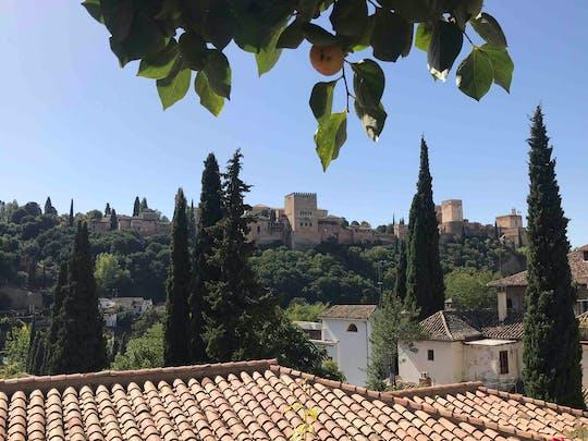 Visita privada à Alhambra e aos monumentos muçulmanos de Granada