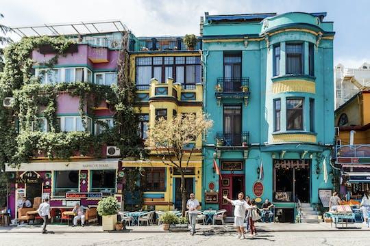 Disfruta de un tour personalizado de medio día en Estambul con un local.