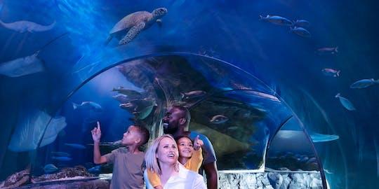 Tickets to SEA LIFE Orlando Aquarium