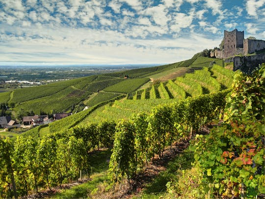 German wine route private full day trip from Strasbourg