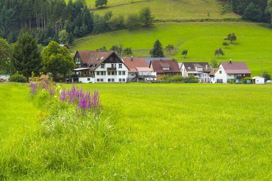 Baden Baden & Black forest private full day trip from Strasbourg