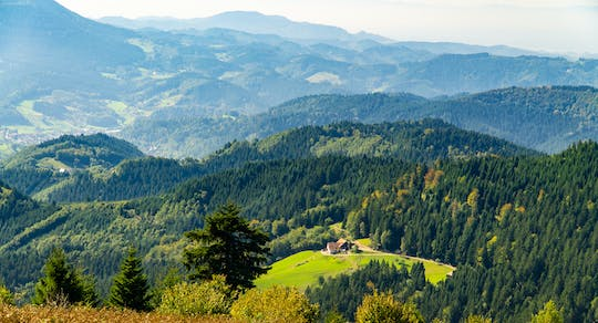 Freiburg & The Black Forest private full day trip from Strasbourg