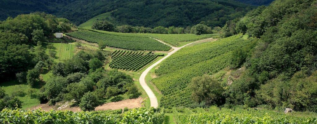 Excursión privada de medio día a los pueblos y vinos de Alsacia desde Estrasburgo