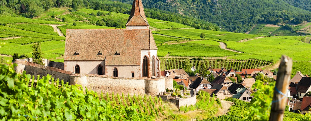Alsace Grands Crus wines full-day private tour from Strasbourg