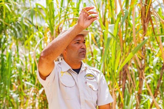 Dominikanisches Bauernhof-Erlebnis