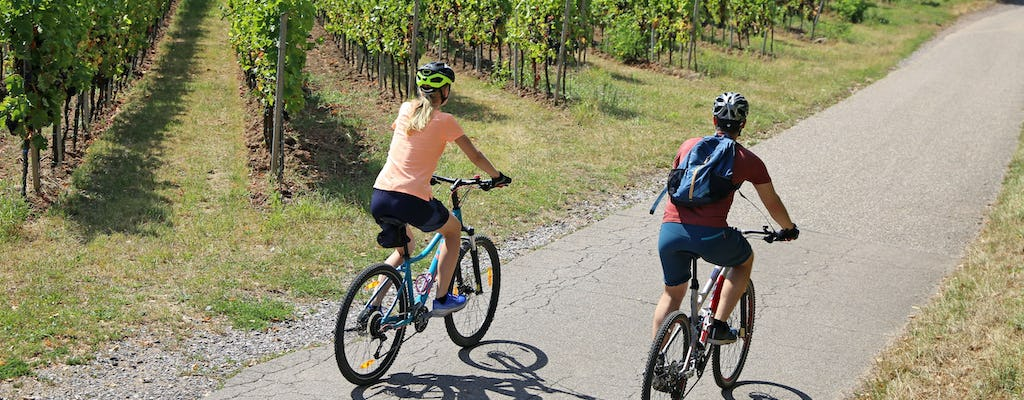 Private guided bike tour on the Bergstraße