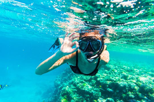 Snorkeling trip with transport from Dubai