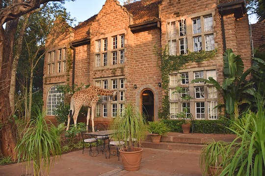 Half-day Karen Blixen Museum and Giraffe Center tour