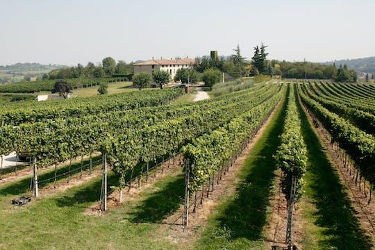 Veneto gourmet private tour