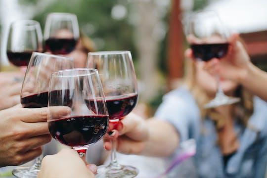 Prywatna wycieczka z degustacją wina na Peljesac