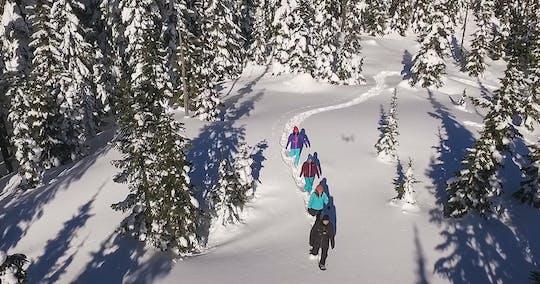 Whistler Schneeschuhwanderung - Natural Mystic