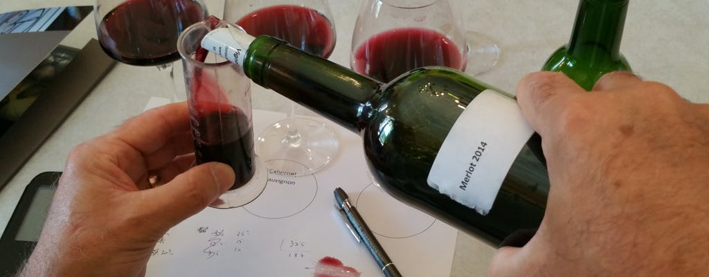 Cata de vinos y creación de su propio vino en Burdeos.