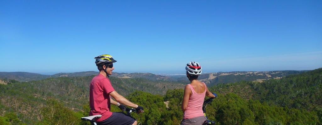 Halve dag Lofty Descents-tour op de fiets