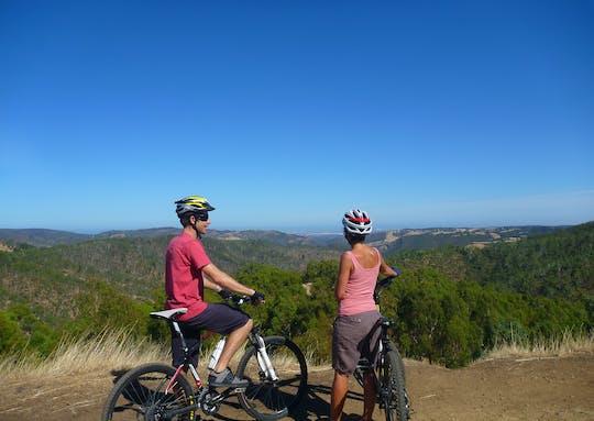Полудневный тур по Высоким спускам на велосипеде