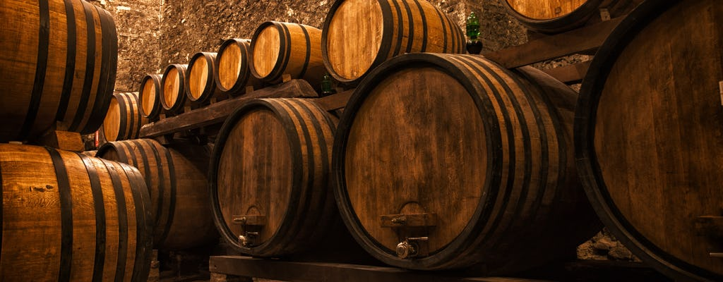 Tour del vino di Porto con degustazione