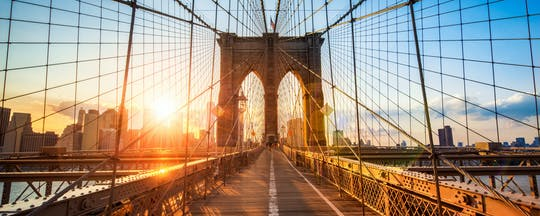 Private Tour New York City Boroughs: Brooklyn, The Bronx, Harlem & Queens with Coney Island