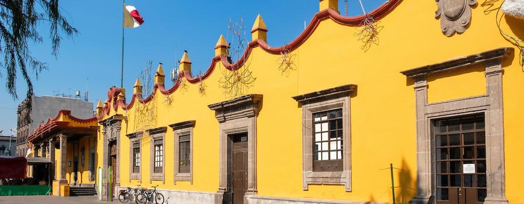 Visita guiada a Xochimilco e Coyoacán