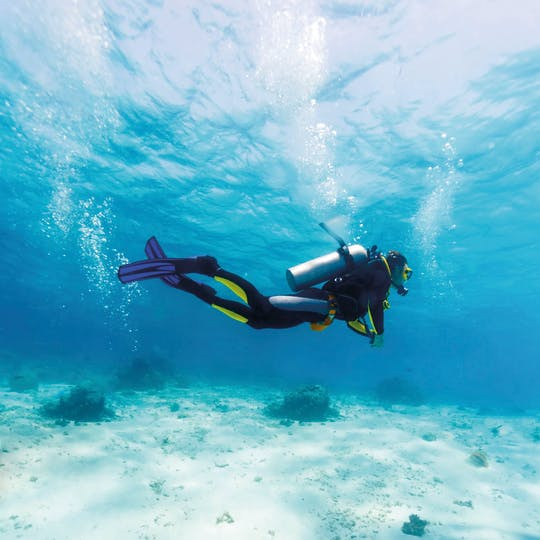 Découvrez la plongée avec Binibeca Diving