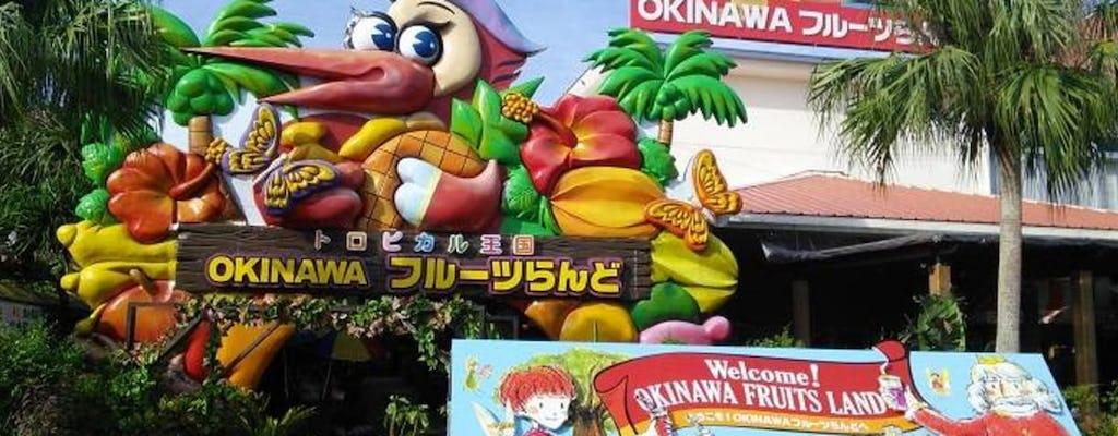 Billet d'entrée au paradis des fruits tropicaux d'Okinawa