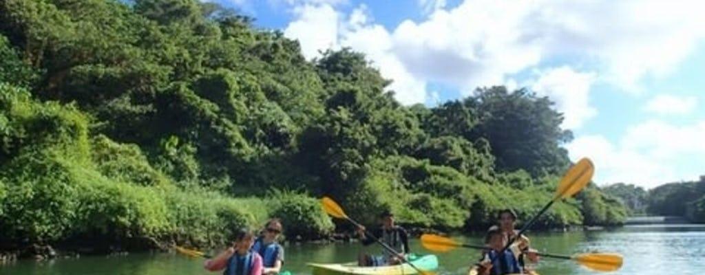 Kayak dans la mangrove de la rivière Hija à Okinawa