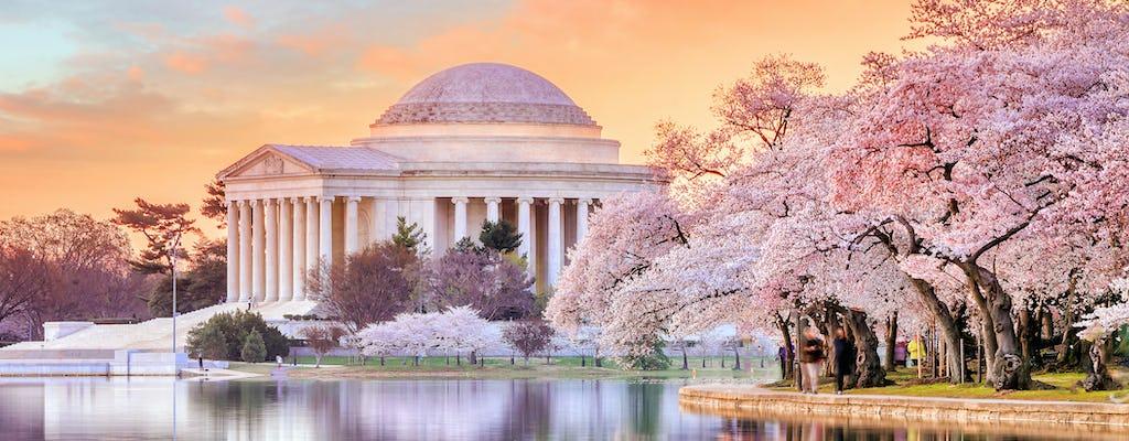 La historia de DC: recorrido privado a pie por el National Mall