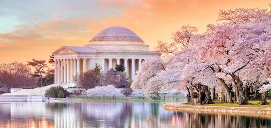 The History of DC: tour privato a piedi del National Mall