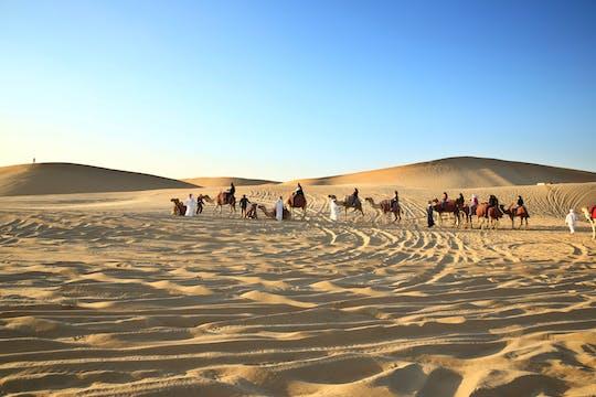 Private camel trekking in Abu Dhabi