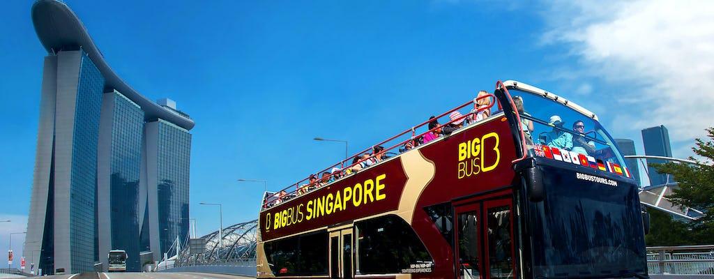 Big Bus tour of Singapore