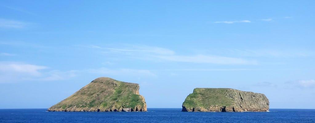 Terceira Walbeobachtung & Insel Erlebnis