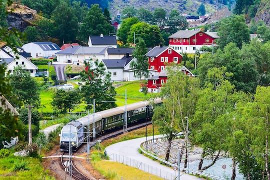 Частная однодневная поездка в оба конца из Осло в Согнефьорд по железной дороге Флам