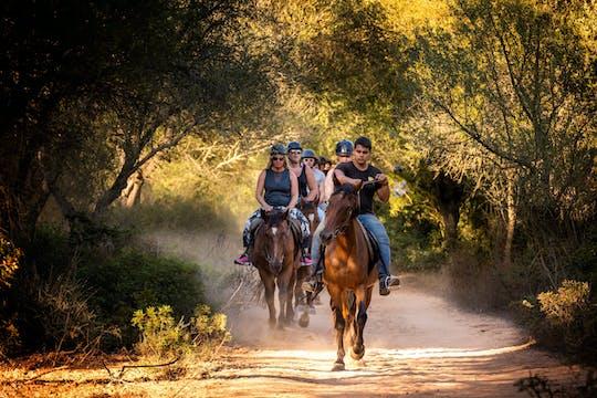 Expérience d'équitation sur le sentier Taino