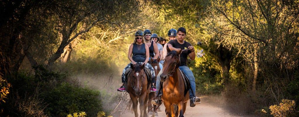 Taino Trail paardrijden