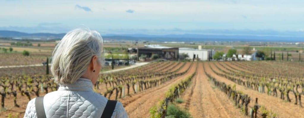 Weinflucht aus Valencia mit Wein- und Cava-Verkostung