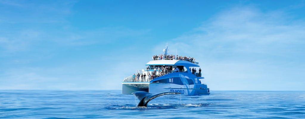 Croisière d'observation des baleines Sea World avec une garantie d'observation à 100%