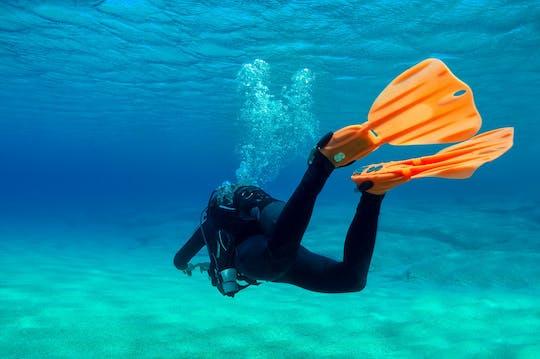 Scuba Diving - Tauchsport