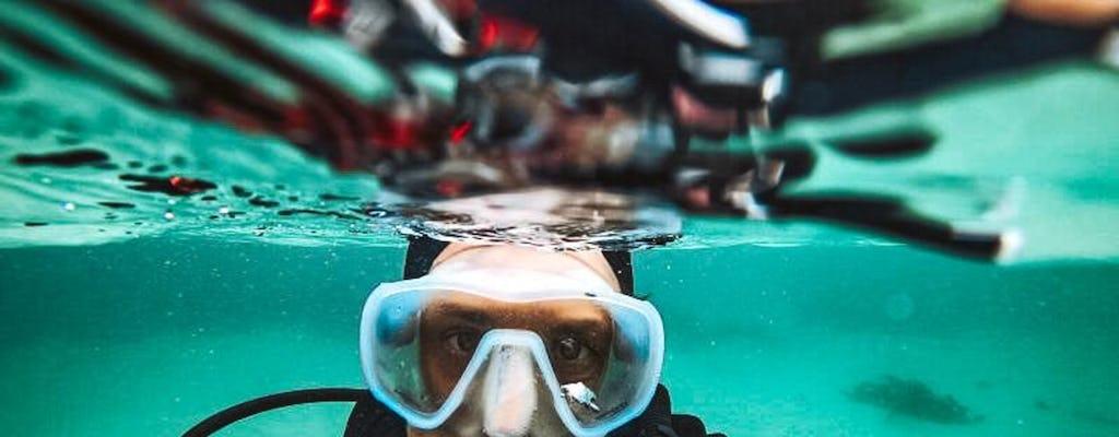 Cape Town scuba diving experience