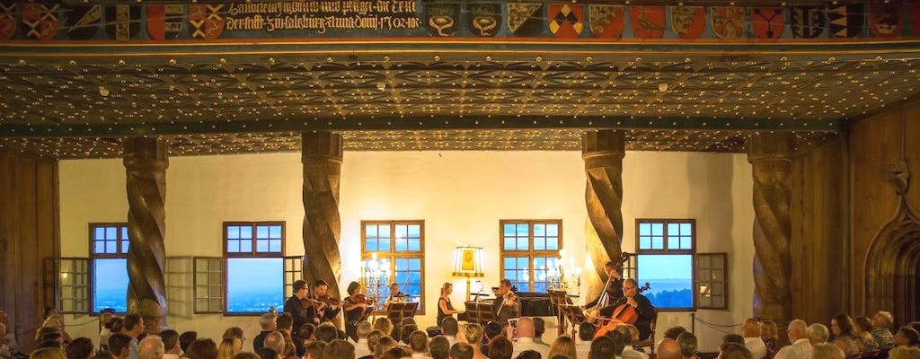 Cruise on the Salzach and Best of Mozart concert with dinner