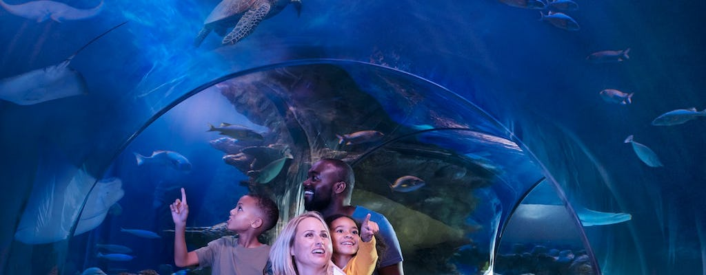 New Jersey's SEA LIFE admission tickets