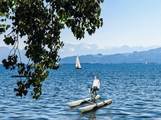 Guided water bike tour on Lake Constance to Hagnau