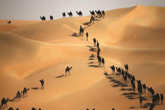 Full-day Liwa 4x4 private safari tour from Abu Dhabi