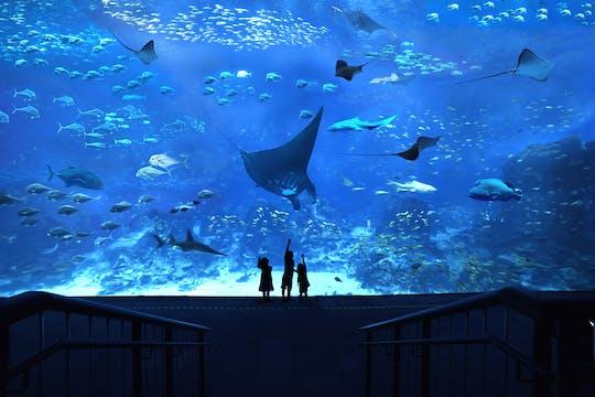 Ingressos padrão do SEA Aquarium ™